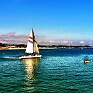 Sailing  by taylormorrill