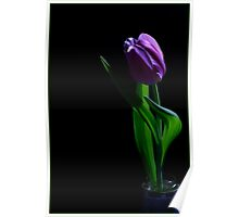 Tulip - Painted with Light 1 Poster