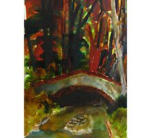 small bridge near Saddell Bay Photographic Print