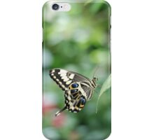 butterfly in green iPhone Case/Skin