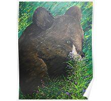 Baby Bear - Acrylic on Canvas Poster