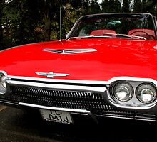 Ford Thunderbird 1963 Model by Carole-Anne