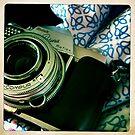 Kodak Retina Reflex Part 4 by Marita
