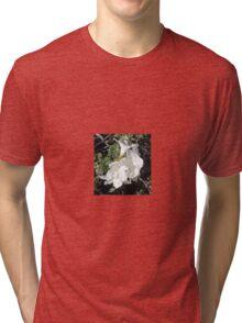 WHITE TRUMPET VINE Tri-blend T-Shirt