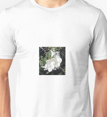 WHITE TRUMPET VINE Unisex T-Shirt