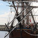 Endeavor in the Port by sharon wingard