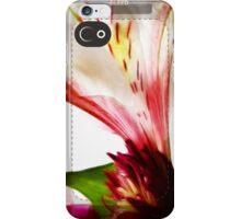 iphone case 23 iPhone Case/Skin