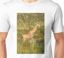 reticulated giraffe - pilanesburg, south africa Unisex T-Shirt