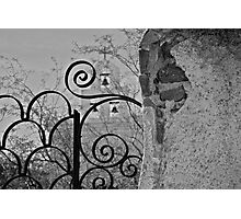the wrought iron fence Photographic Print