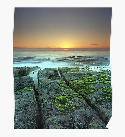 """""""New Life on Old Shores"""" ∞ Woody Head, NSW - Australia Poster"""
