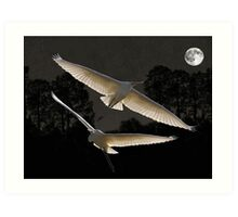 Majestic Great Egrets  Art Print