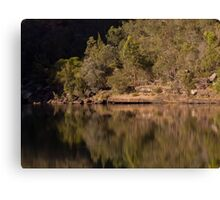 Reflections at the Basin - Bents Basin, NSW Canvas Print