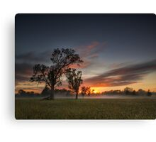 Beauty of Badgerys Creek Canvas Print