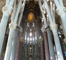 Sagrada Familia Cathedral by Braedene