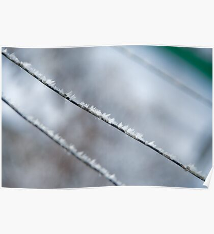 snow flakes on a wire - 02 Poster