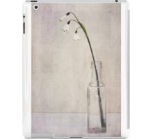 A Stillness iPad Case/Skin