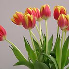 Vase of tulips by daliant