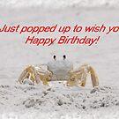 Happy Birthday by designingjudy