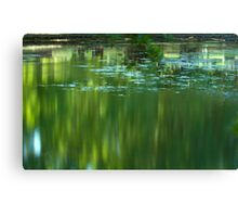 Not So Still Waters Canvas Print