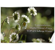 TOP 10 Challenge Winner Banner for Mother Nature's Finest! Poster