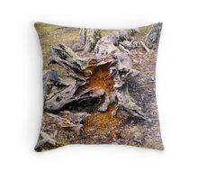 Calafate Bahia Onelli Natural Park, Argentina Throw Pillow