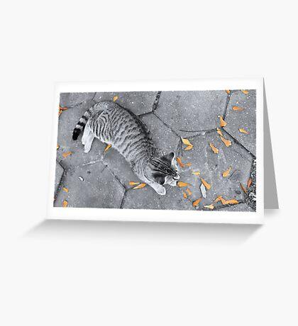 Lay. Greeting Card