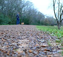 Walking the Cat.  by shelbyleah