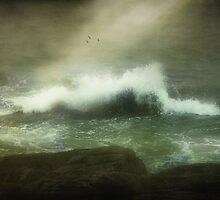 Stormy Seas  by Elaine  Manley