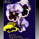 Solace - Bereavement Card by BlueMoonRose