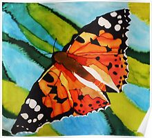 Painted lady butterfly on silk Poster