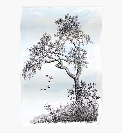 PENDRAWING TREE - BACKGROUND AQUAREL Poster