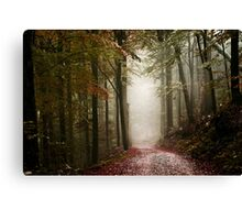 Mitsy woods Canvas Print