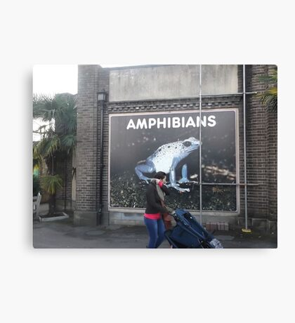 London Zoo/Reptiles House/Poster(1 of 3) -(190212)- digital photo Canvas Print