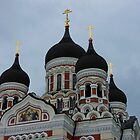 Alexsander Nevsky Church by Lucinda Walter