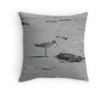 Shorebird Amongst the Seaweed Throw Pillow