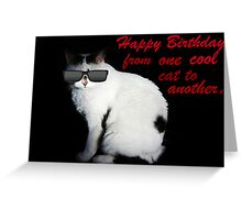 Cool Cat Card Greeting Card
