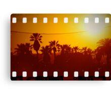 PalmSet - 35mm Molga Canvas Print