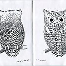 Owls Can Turn Their Heads All the Way Around by SigneNordin