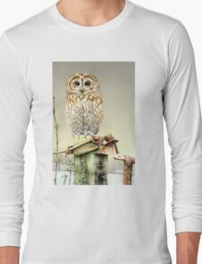 Tawny owl in the snow Long Sleeve T-Shirt