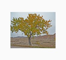Autumn Colours in the Badlands, South Dakota, USA Unisex T-Shirt