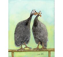 Guinea Hen Rooster Kisses Cathy Peek Animal Art Photographic Print