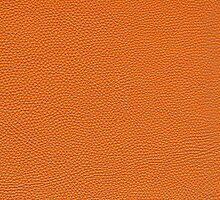 Orange Pebbled Leather Look by Heidi Hermes