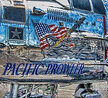 Pacific Prowler by Steve Walser