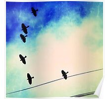 Red-winged blackbirds flying overhead, with wires Poster