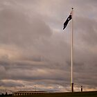 Canadian Flagpole in Commonwealth Park  by Tony Theobald