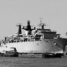Warship HMS Bulwark B&W by Jasna