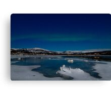 Icy world Canvas Print