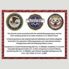 FBI Piracy Notice by mobii