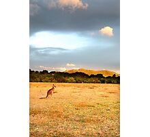 Wilsons Promontory 2012, Vic, Australia. Photographic Print