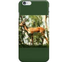 Male African Impala Antelope iPhone Case/Skin